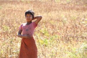世界一周旅行記 ミャンマー